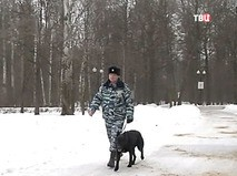 "Петровка, 38. ""Петровка, 38"". Эфир от 24.01.2018 05:40"