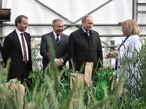 Владимир Путин во время посещения Национального центра зерна в Краснодаре