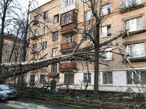 Последствия обрушившегося на Москву урагана