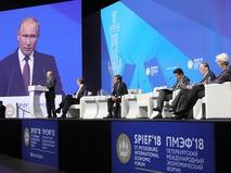 Владимир Путин выступает на пленарном заседании Петербургского международного экономического форума