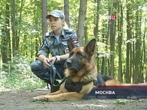 """""""Петровка, 38"""". Эфир от 20.06.2018 02:20"""