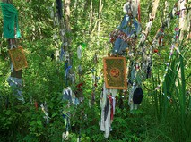 Шутов лес