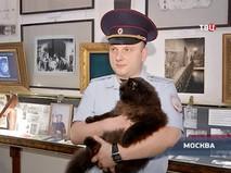 """""""Петровка, 38"""". Эфир от 02.08.2018 20:00"""