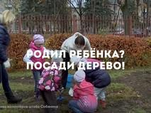 Родил ребенка? Посади дерево!