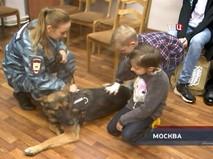 """""""Петровка, 38"""". Эфир от 25.10.2018 20:00"""
