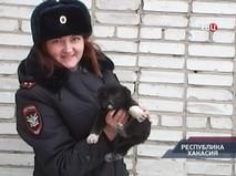 """""""Петровка, 38"""". Эфир от 28.01.2019 20:00"""