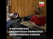 Собаки в библиотеках