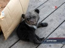 """""""Петровка, 38"""". Эфир от 19.04.2019 02:10"""
