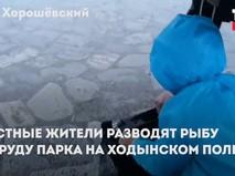 Местные жители разводят рыбу в пруду на Ходынском поле