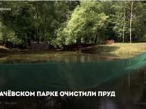 Чистый пруд в Грачевском парке