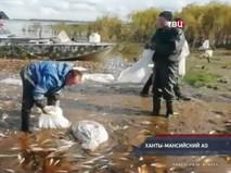 """""""Петровка, 38"""". Эфир от 12.09.2019 00:35"""