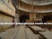 Бирюлёвская линия