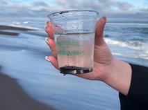 Загрязнение воды на Камчатке