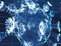 Новые технологии позволили Москве успешно бороться с пандемией