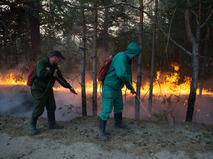 Лесной пожар в Тюменской области