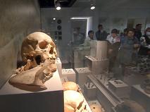 Выставка археологических находок в Крыму