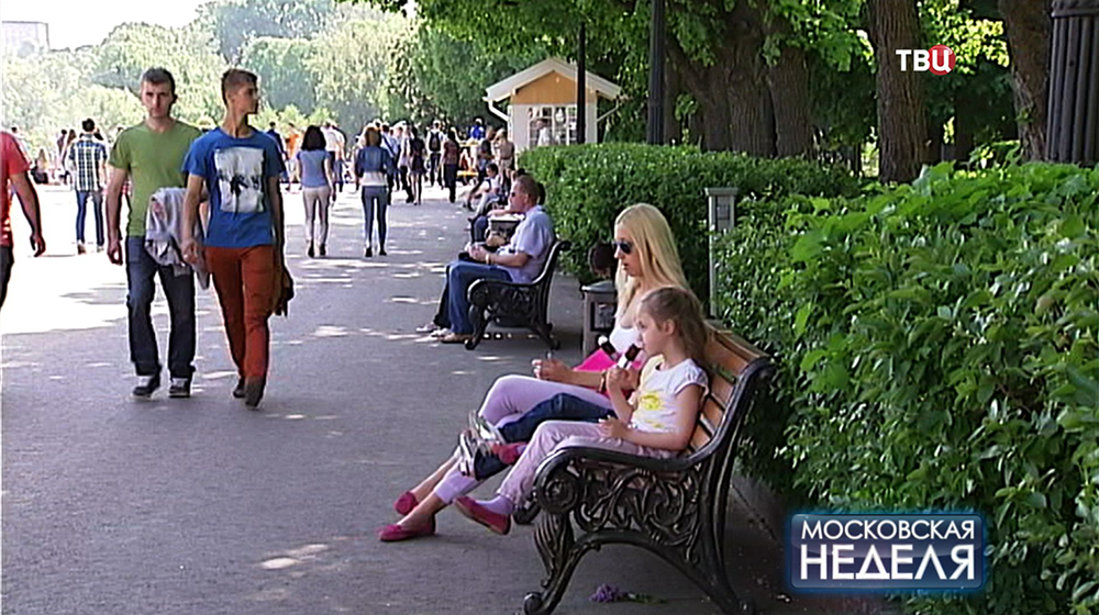 Аллея в парке Горького