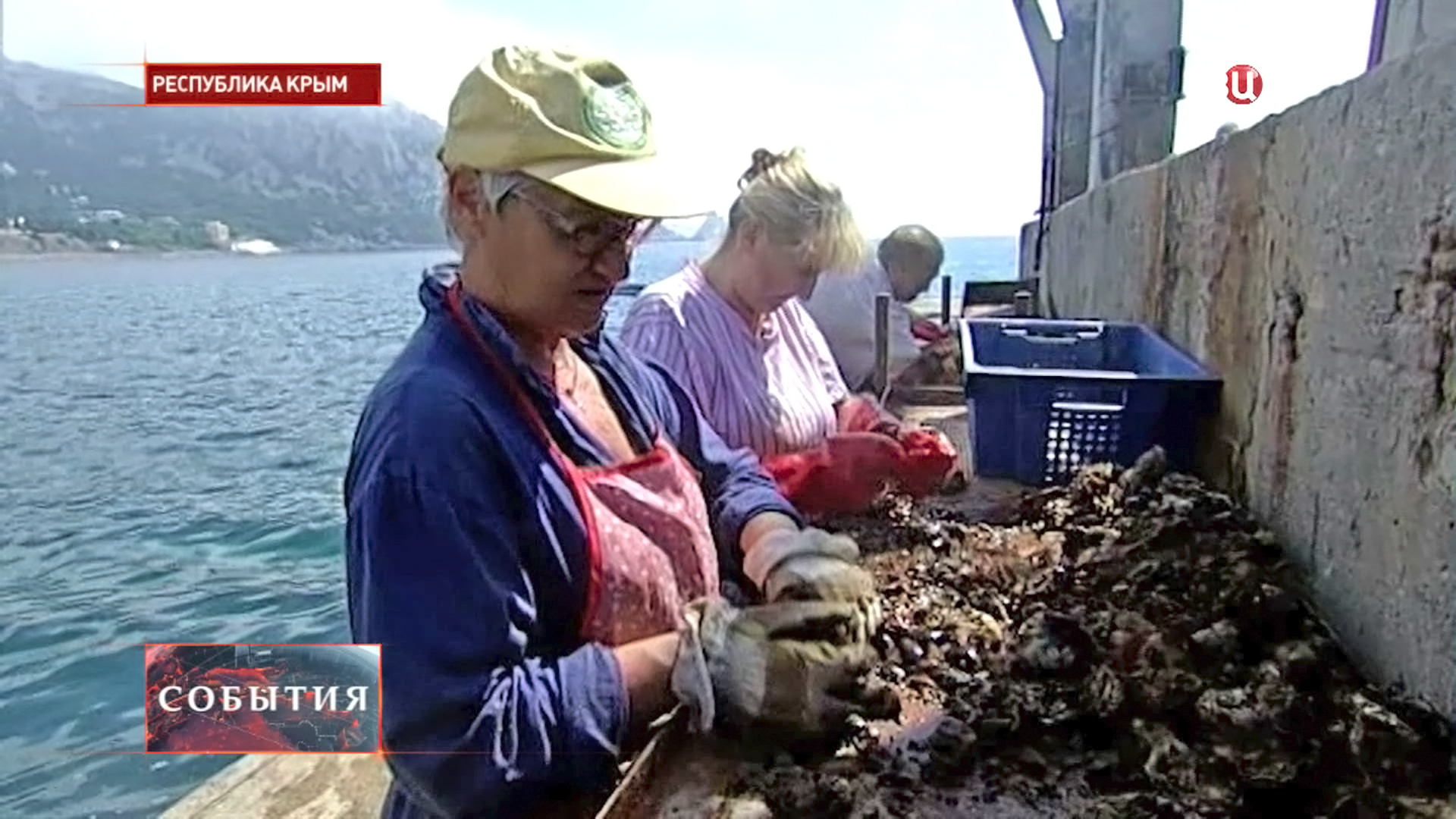 Чистка морепродуктов