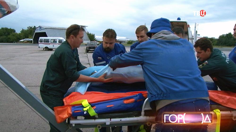 Врачи и спасатели МЧС перекладывают на носилки больного
