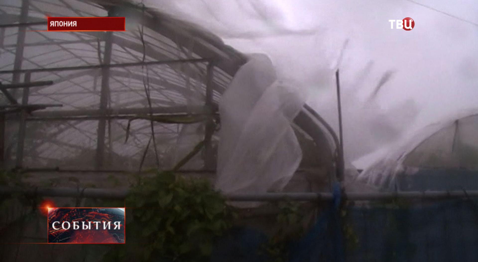 "Тайфун ""Неогури"" в Японии"