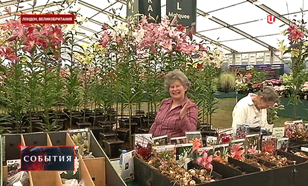 Крупнейшая выставка садового искусства открылась в Лондоне