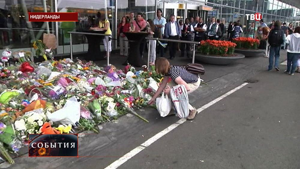 Цветы у аэропорта Схипхол в Амстердаме