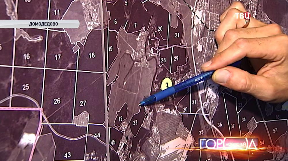 Участок валки леса в Домодедовском районе
