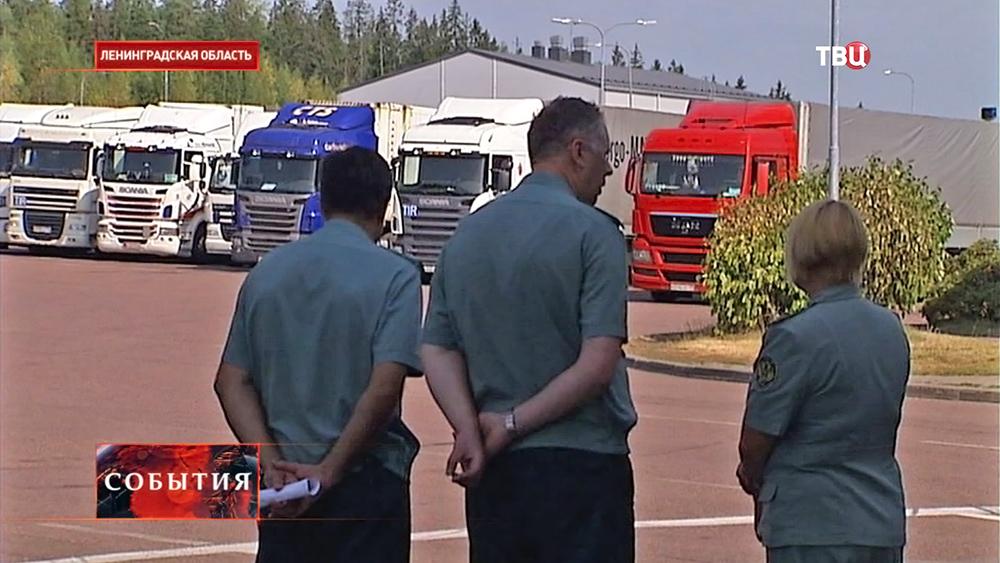Работа таможенного пункта в Ленинградской области