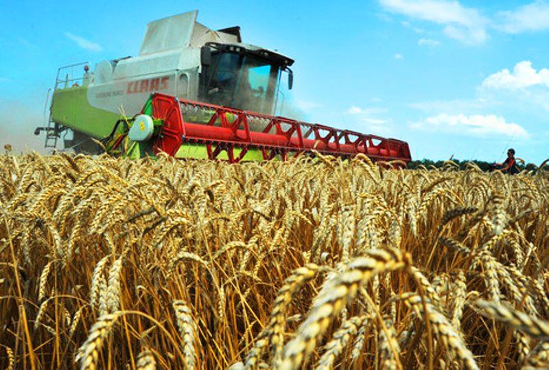 Сельскохозяйственные работы