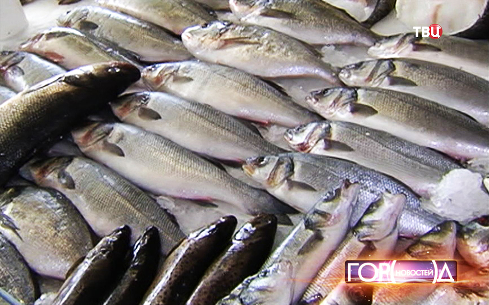 Рыбный отдел в магазине