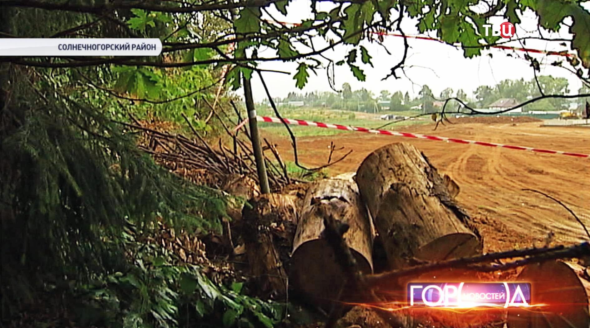 Вырубка деревьев в Солнечногорском районе