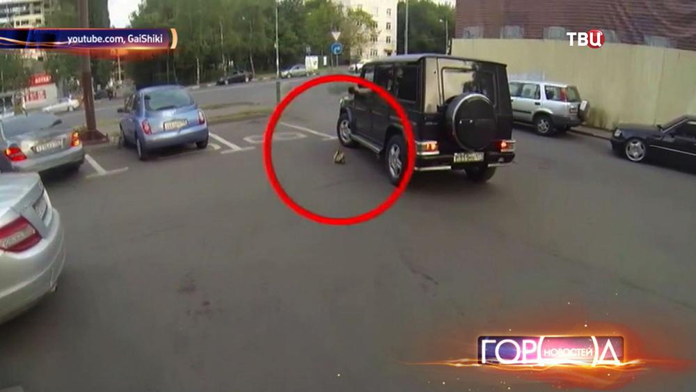 Девушка-мотоциклист борется с мусорящими водителями