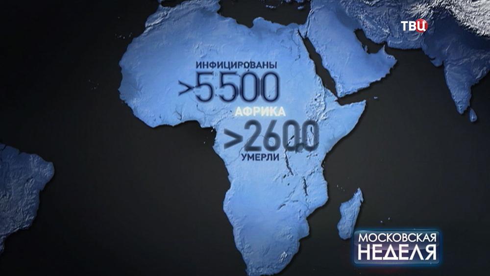 Инфографика последствия вспышки лихорадки Эбола на Африканском континенте