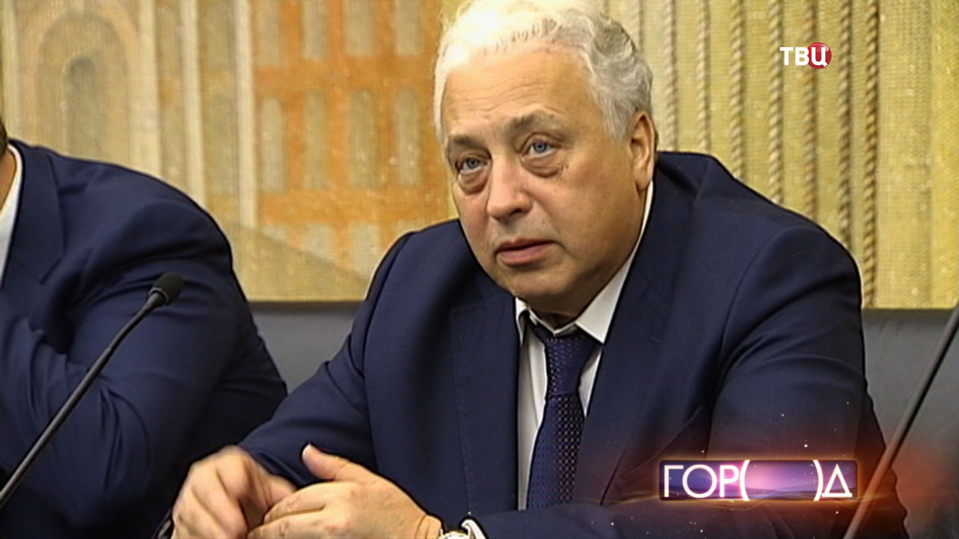 Заместитель мэр Москвы по вопросам социального развития Леонид Печатников