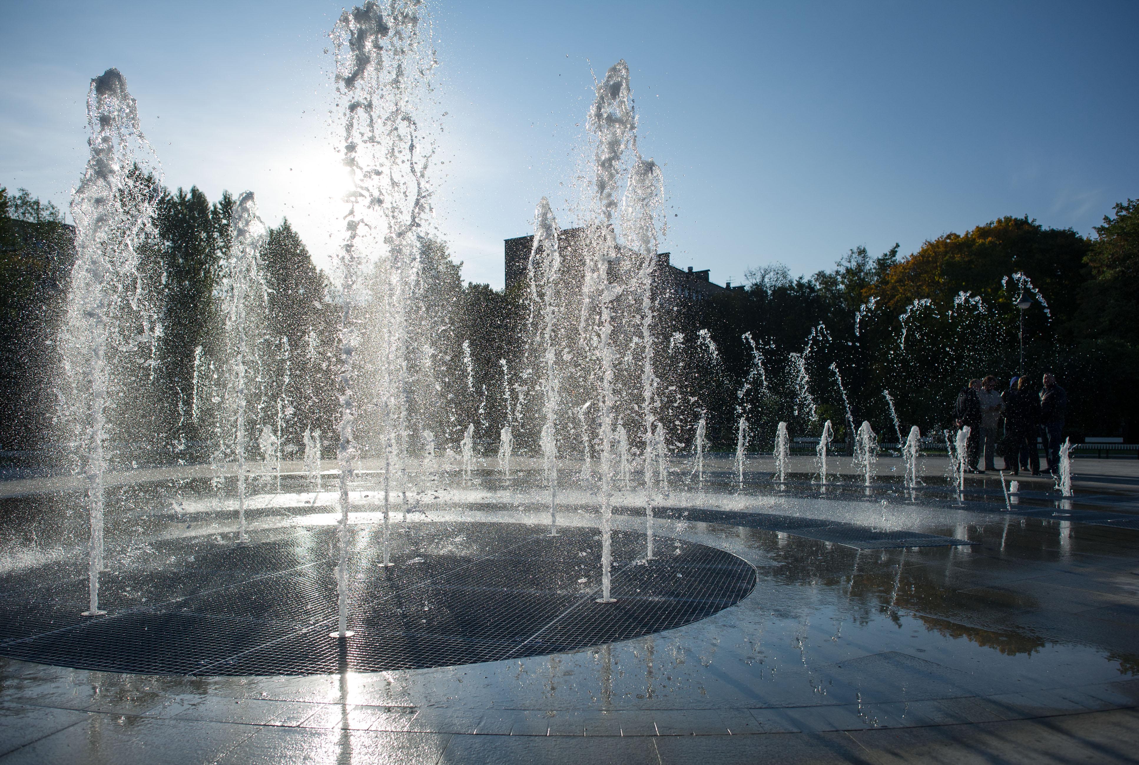 "Парк ""Сиреневый сад"". 2014 год"