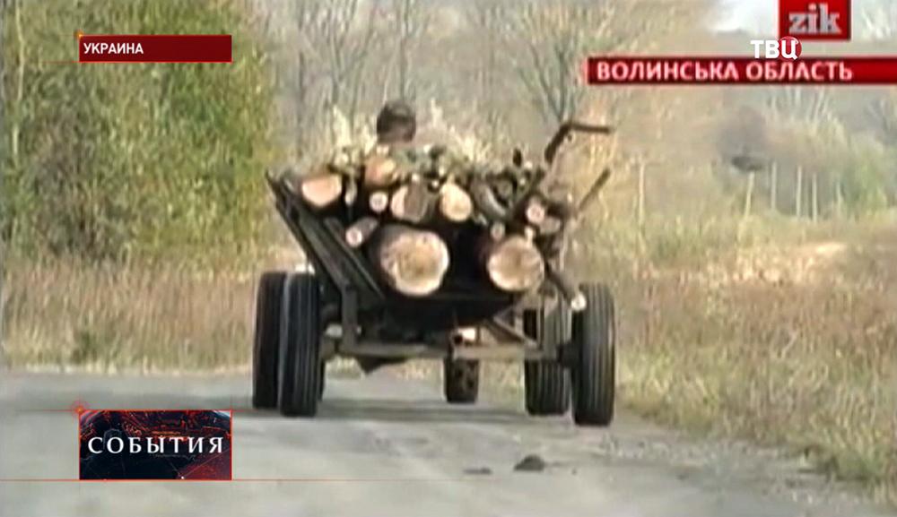 Жители Украинских сел запасаются дровами