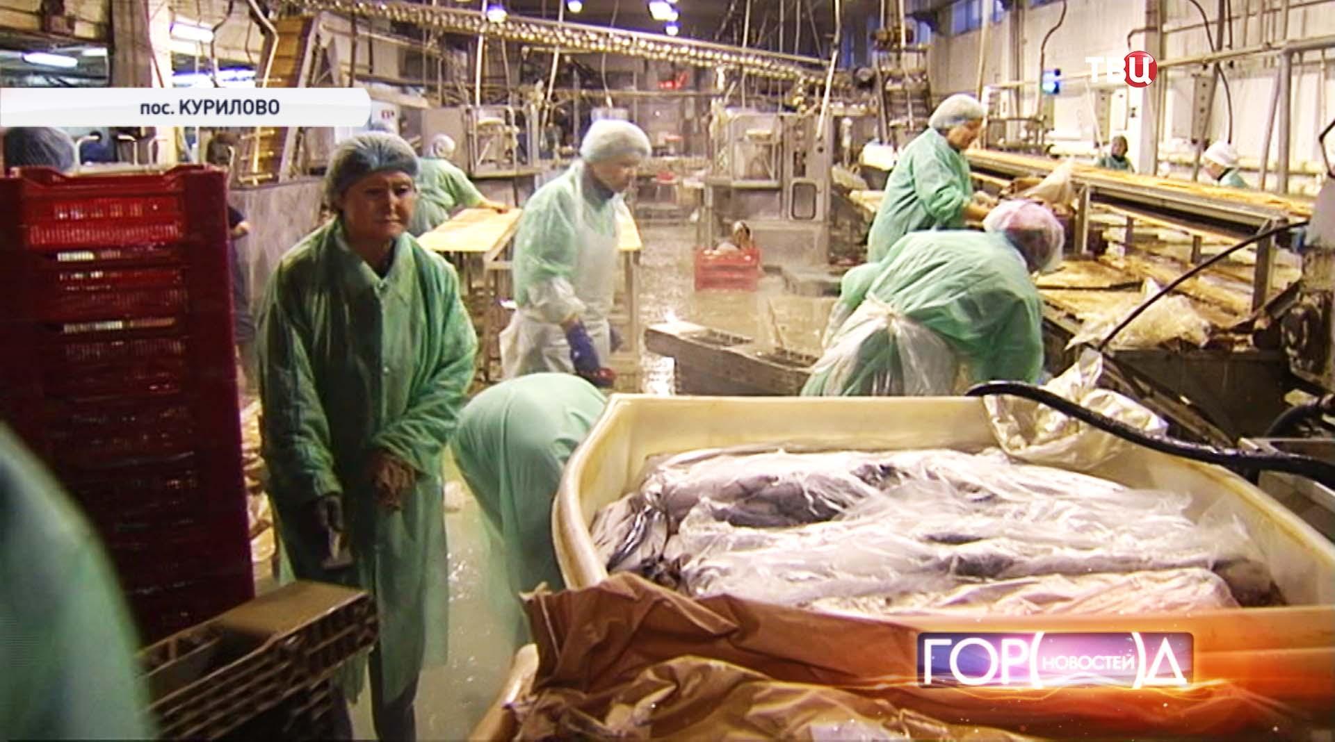 Рыбный цех в поселке Курилово