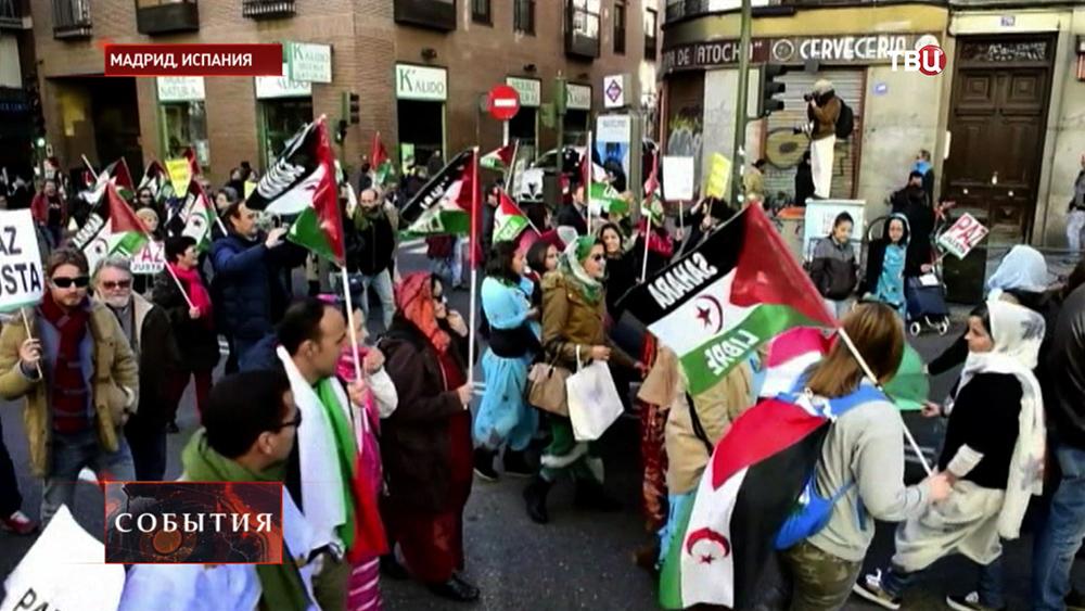 В Мадриде прошла акция с требованием провести референдум о самоопределении в Западной Сахаре