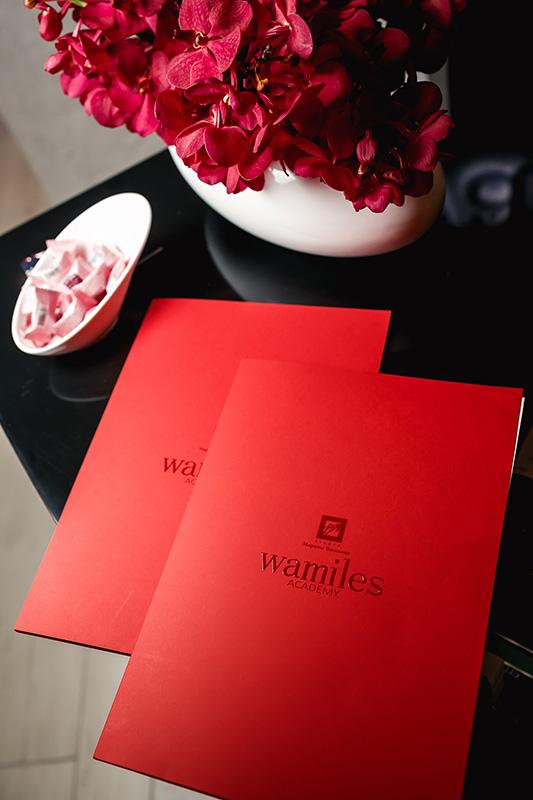 Wamiles — настоящая лечебная клеточная косметика, которая на 100%сделана в Японии