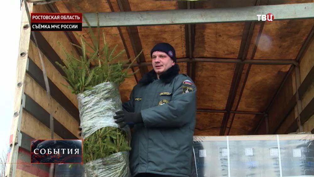 Новогодние ёлки для юго-востока Украины