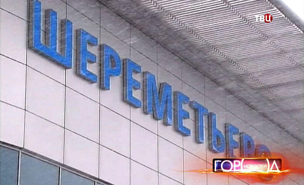 """Снегопад повлиял на работу аэропорта """"Шереметьево"""""""