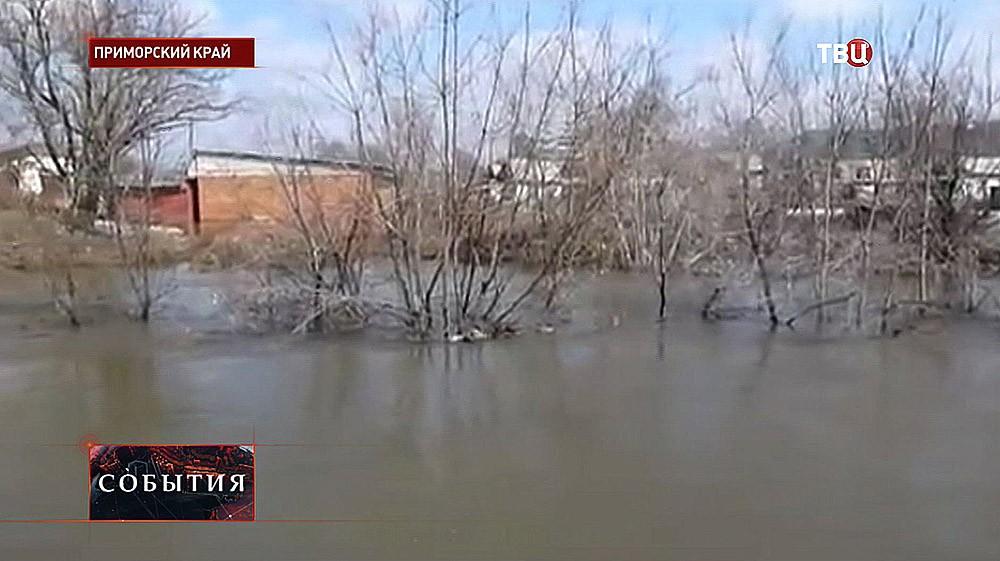 Весенний паводок в Приморском крае