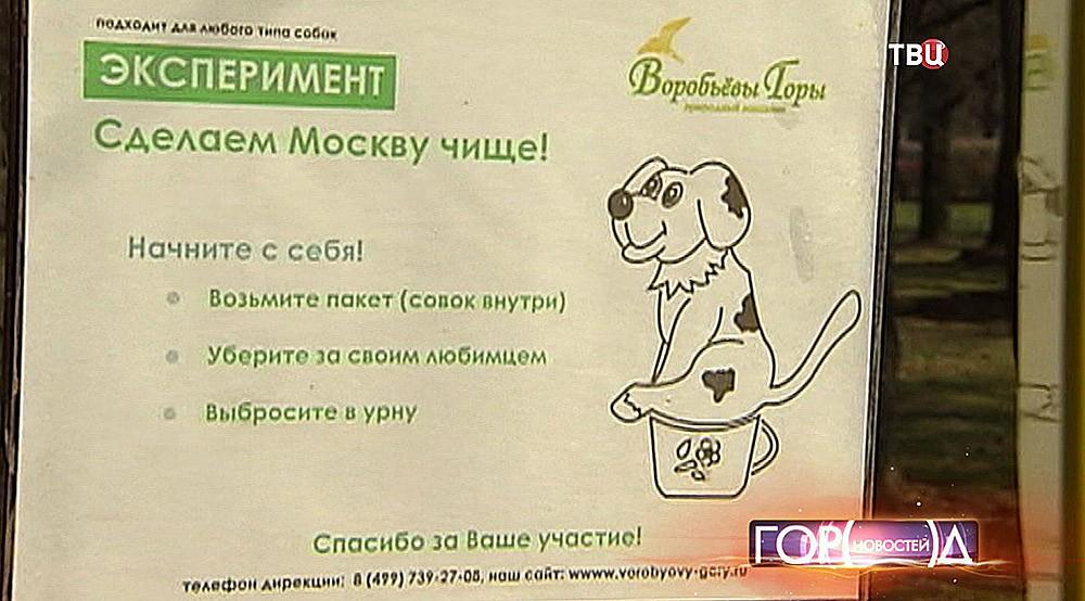 """Плакат """"сделаем Москву чище!"""""""