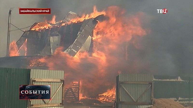Лесной пожар в Забайкальском крае