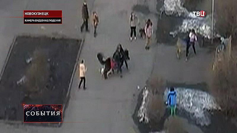 Сбежавший питбуль держит в страхе Новокузнецк