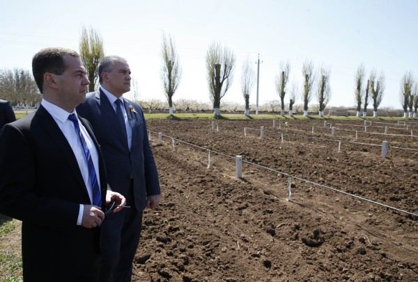 Во время посещения аграрного предприятия в Крыму