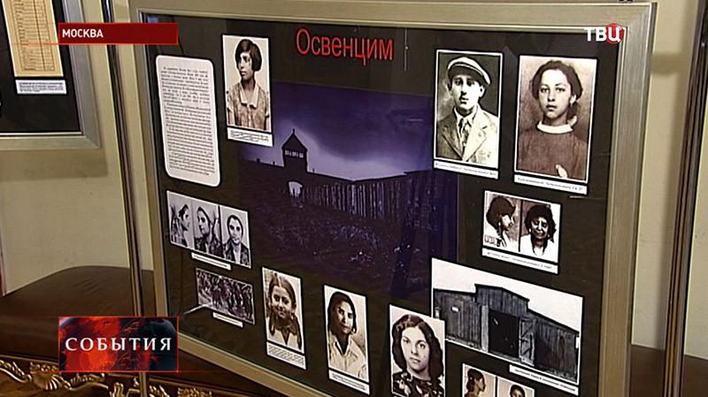 """Выставка """"Цыганская трагедия"""""""