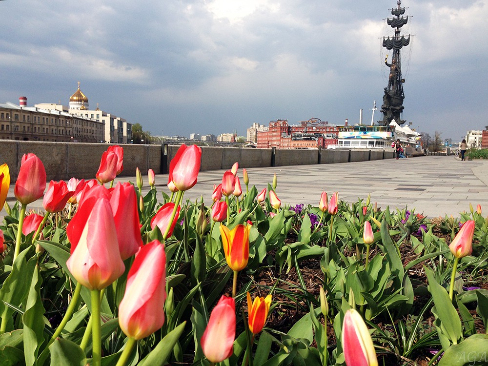 Тёплая погода в Москве