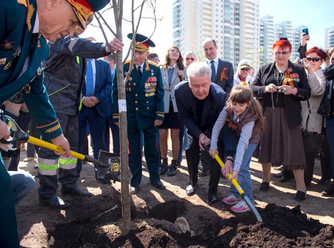 Мэр Москвы Сергей Собянин сажает деревья
