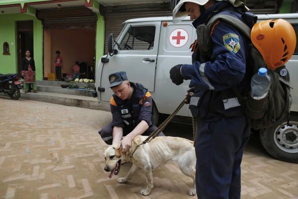 Сотрудники МЧС РФ во время поисково-спасательной операции в Непале